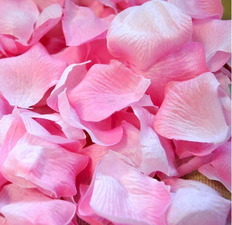 Pink wedding Rose Petals