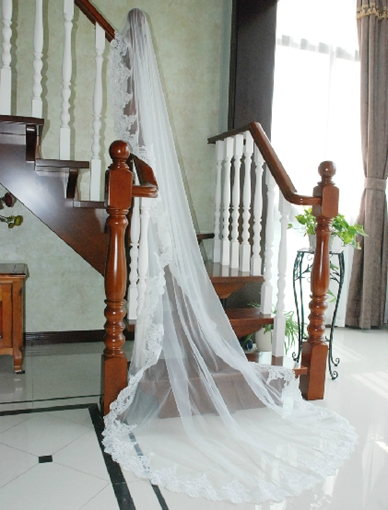 White Tulle Cathedral Length Wedding Veil