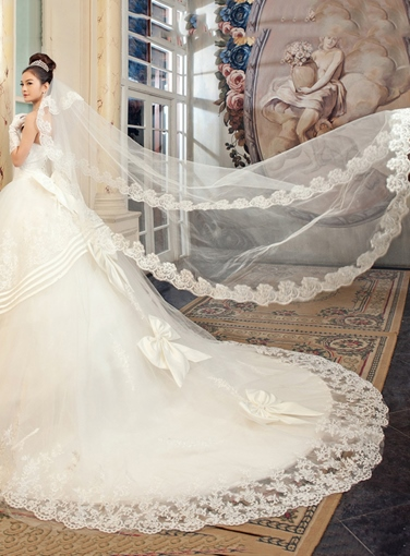 Cathedral Length Appliques Tulle Wedding Veil