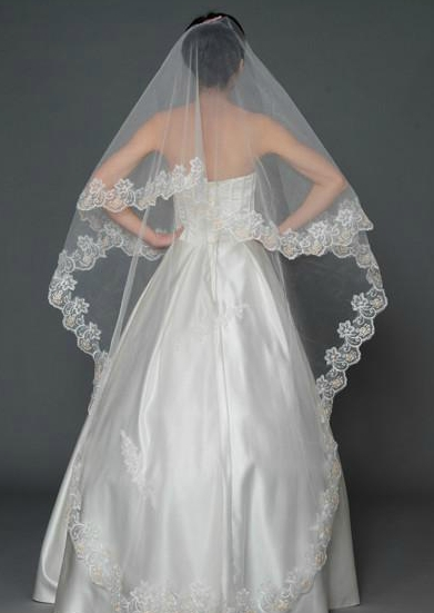 Appliques Cathedral Length Wedding Veil