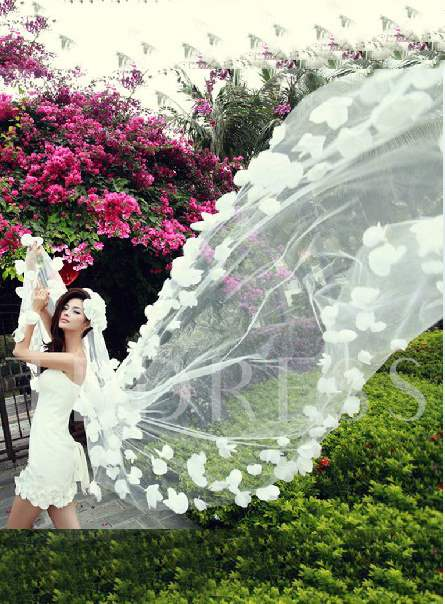 Cathedral Length Flowers Wedding Veil