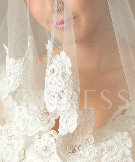 Lace Appliques Cathedral Length Wedding Veil