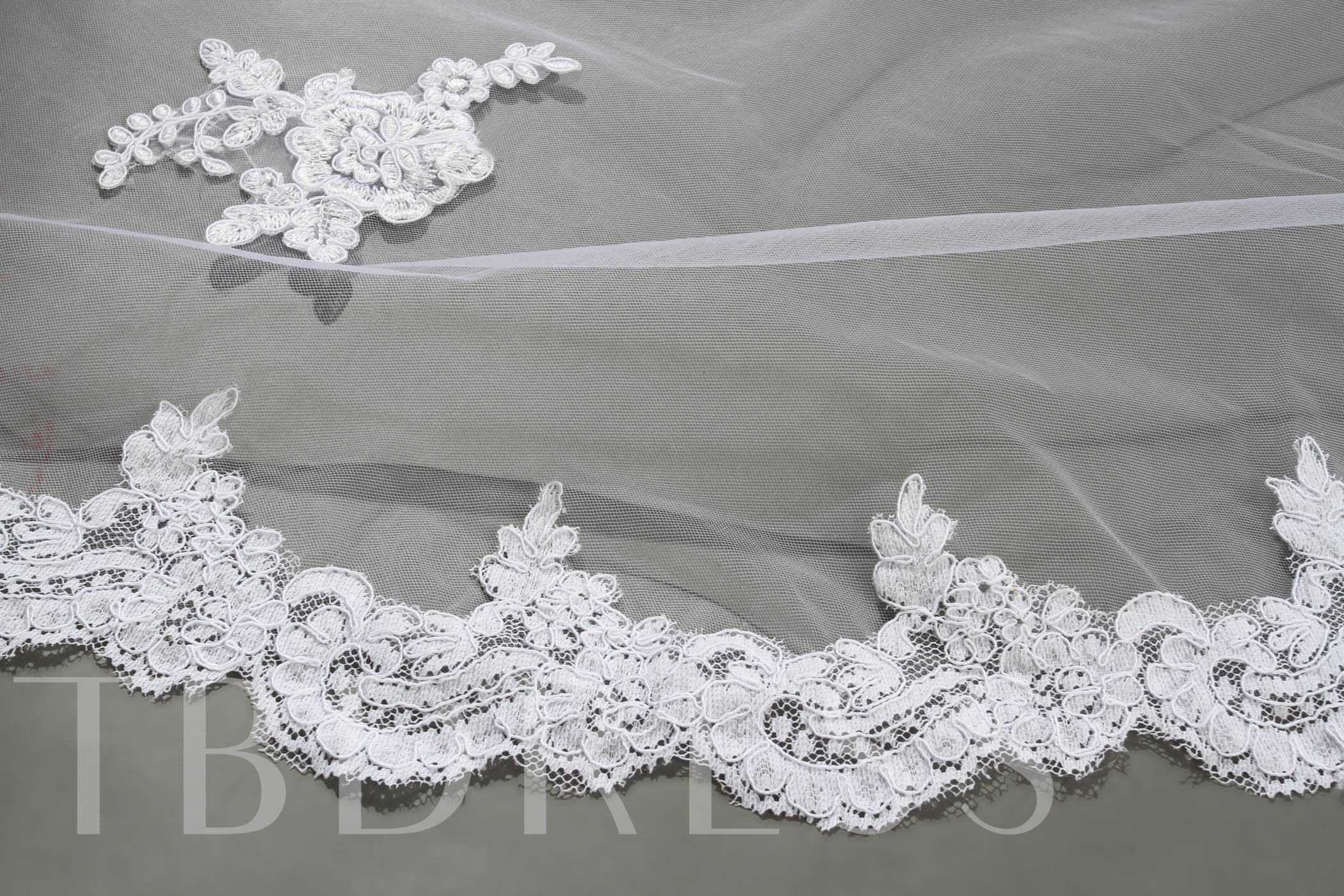 Cathedral Length Lace Appliques Wedding Veil