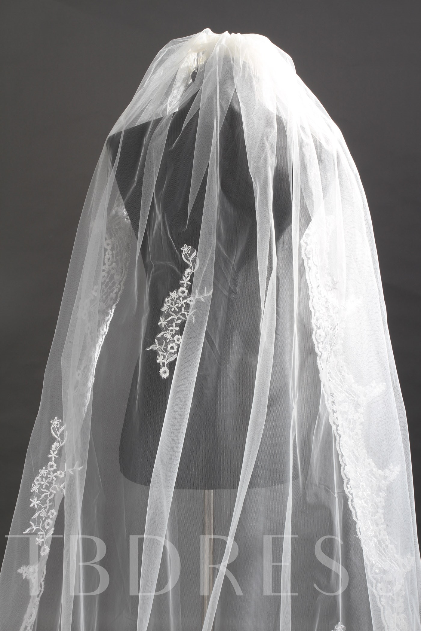 Cathedral Length Ivory Lace One-Tier Wedding Veil