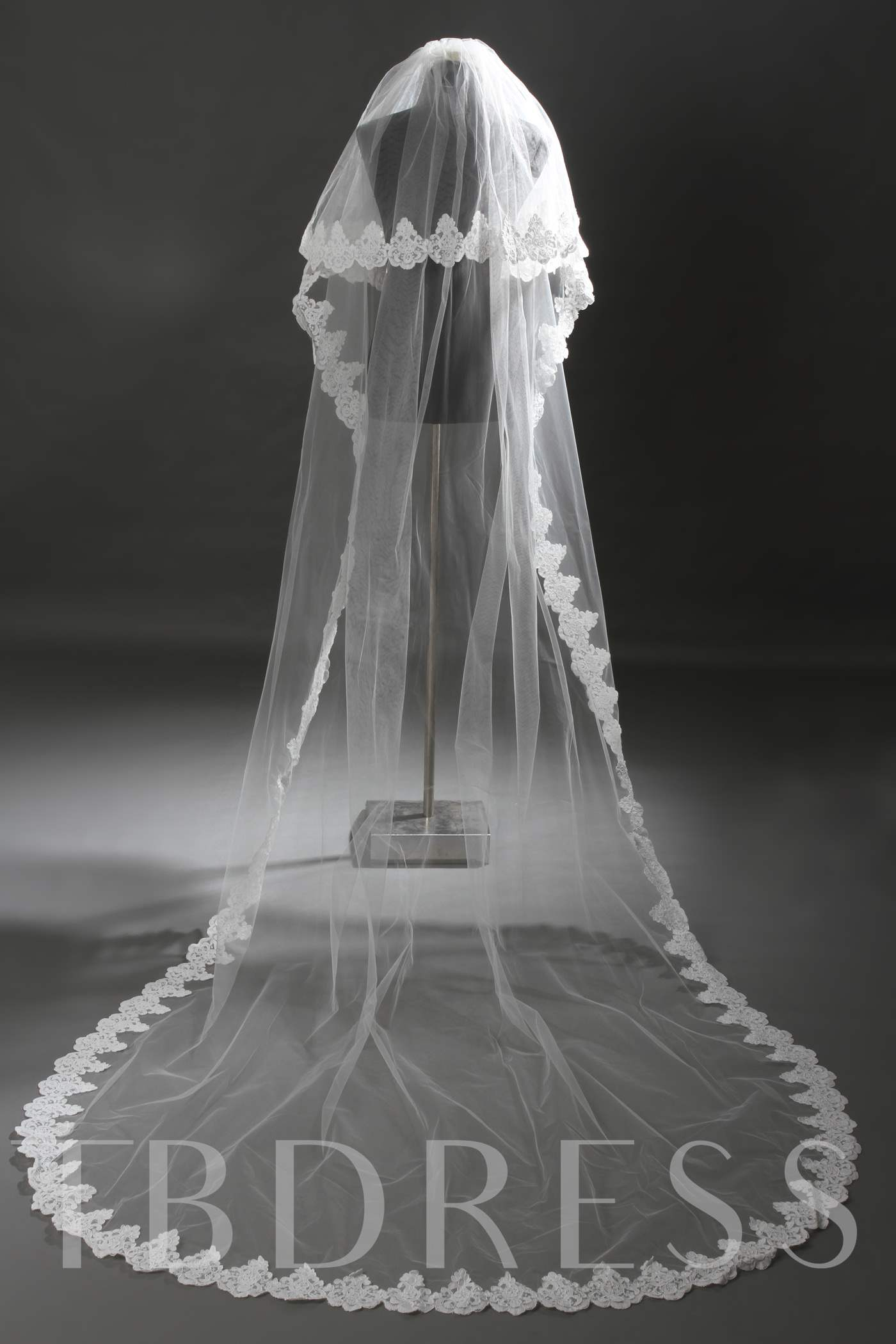 2 Layer Cathedral Length Lace Wedding Veil