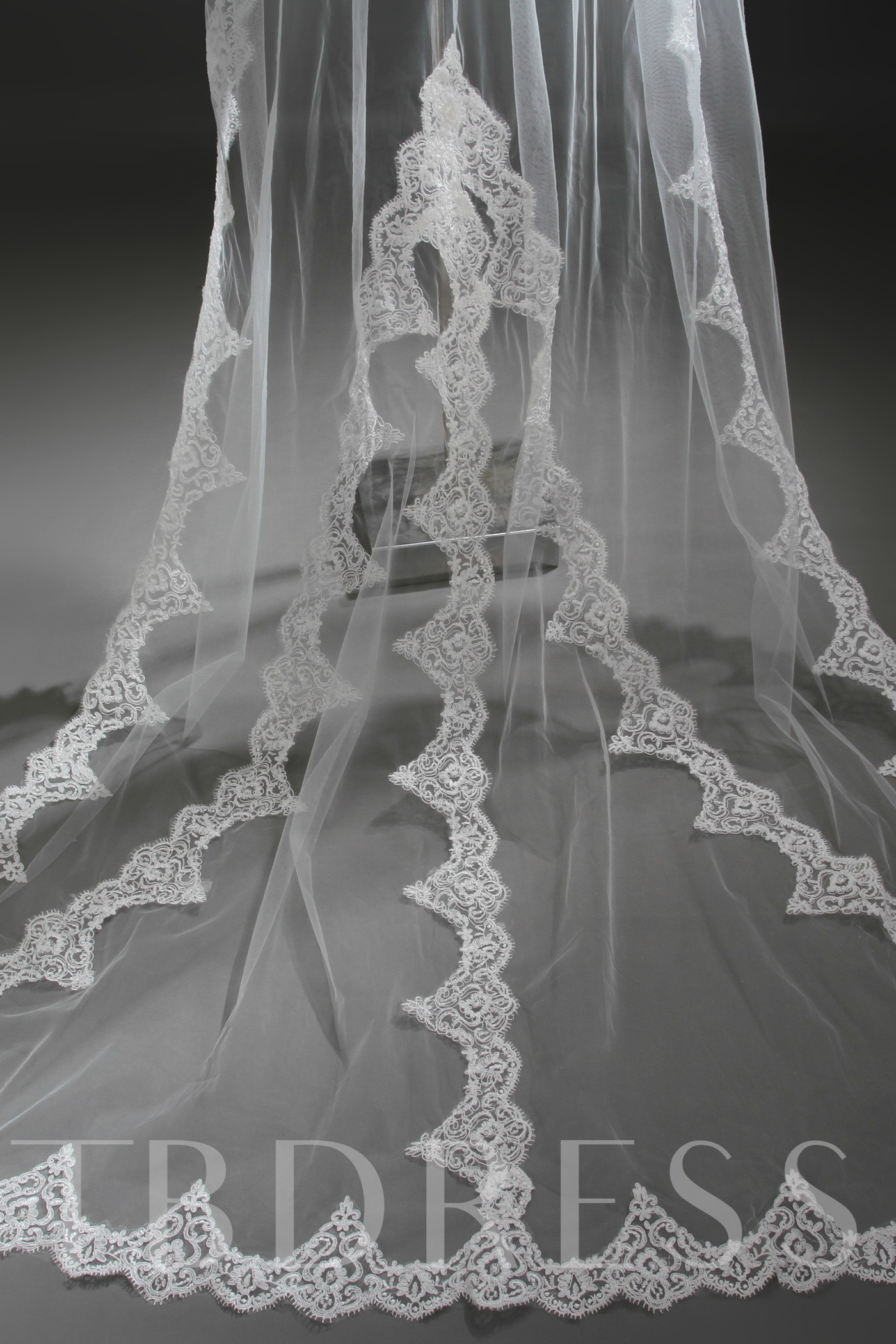 Cathedral Style Wedding Veil