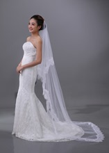 Lace Embellishments Cathedral Wedding Veil
