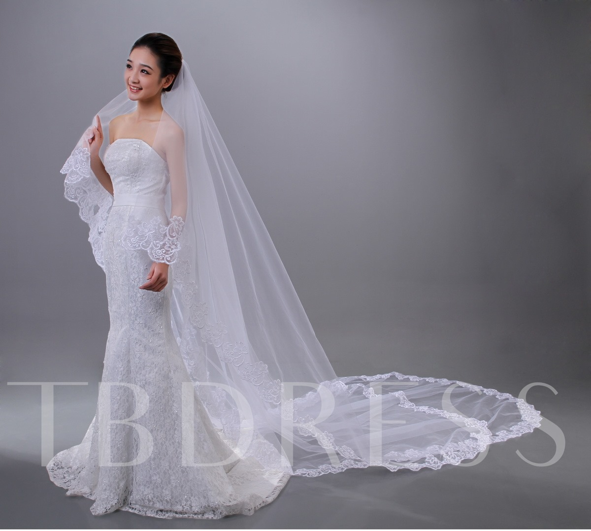 Cathedral Length Lace Edge Wedding Veil