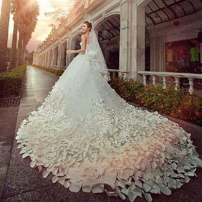 Princess Beading Appliques Wedding Dress with Train