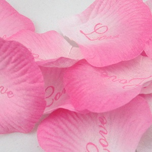 Graduate Color Pink Wedding Rose Petals