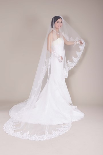 Cathedral Tull Wedding Bridal Veil with Applique