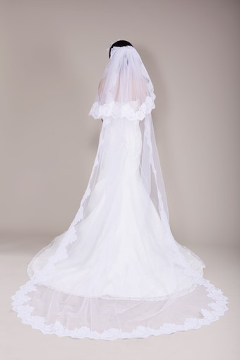 Lace Appliques Edge Chapel Wedding Veil