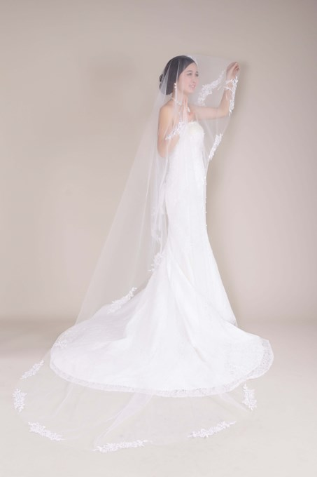 Chapel Length Tull Applique Wedding Bridal Veil