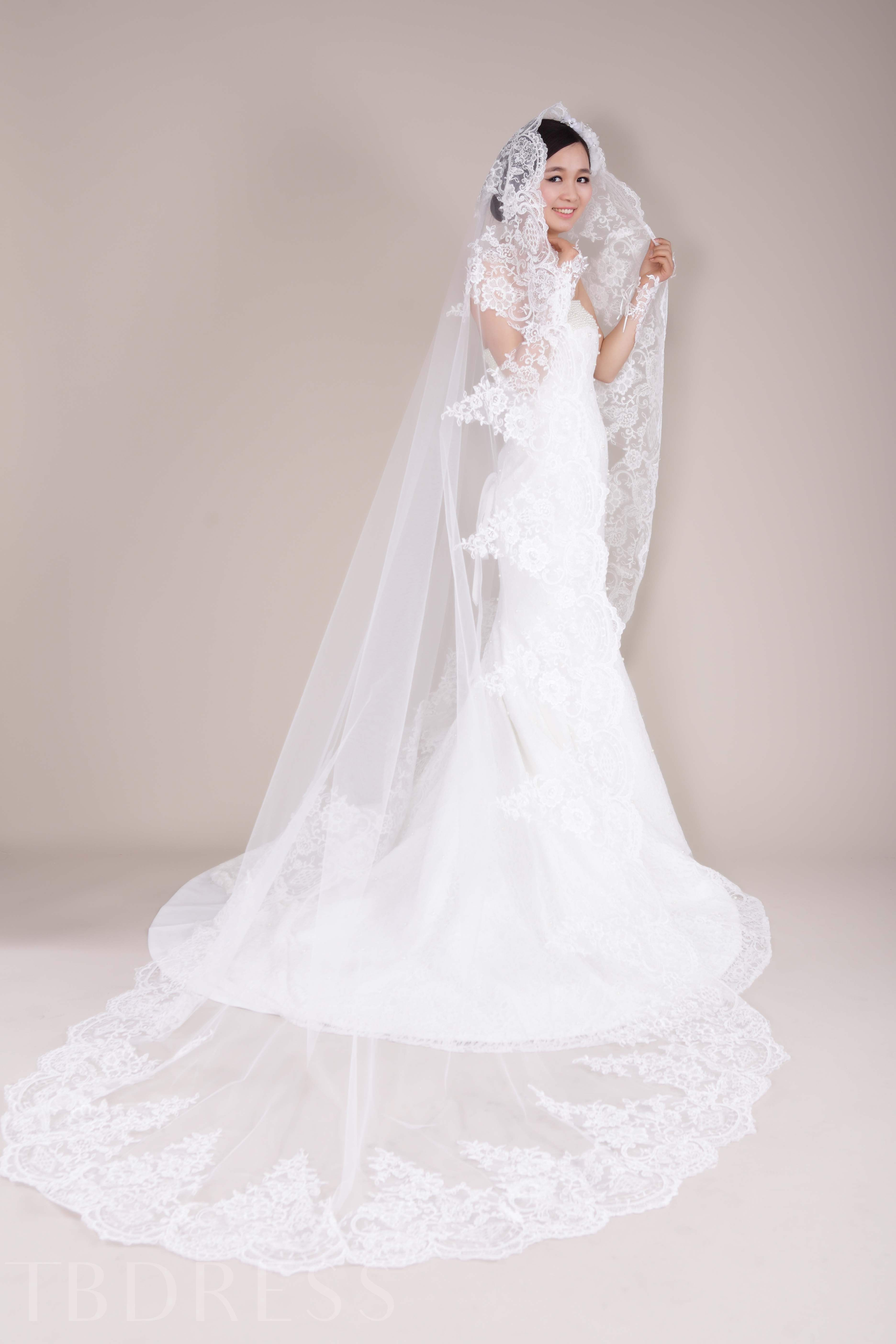Tull Cathedral Wedding Bridal Veil with Applique