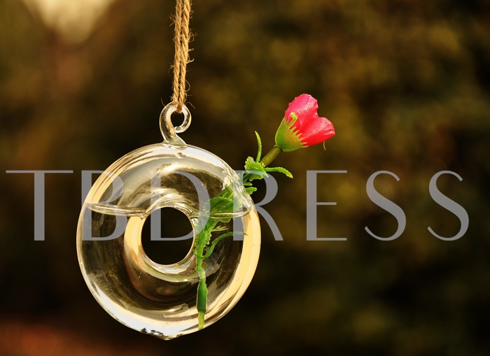 Hanging Roung Glass Vases