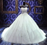 Ball Gown Strapless Beaded Lace-Up Wedding Dress