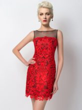 Column Bateau Tulle Lace Short Cocktail Dress