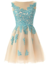 A-Line Scoop Neck Appliques Sweet 16/Homecoming Dress