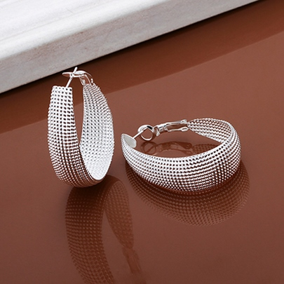 Silver Net Surround Earrings