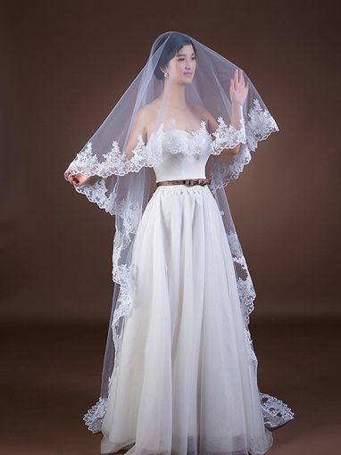 Lace Edge Cathedral Long Wedding Veil