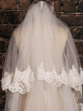 2T Lace Edge Cathedral Wedding Veil