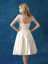 Short Sleeve Lace Bowknot Homecoming Dress