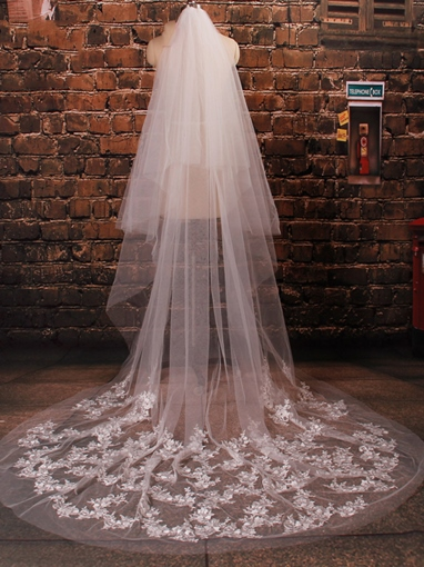 2T Embroidery Appliques Chapel Wedding Veil