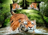 Tiger Jumping into Water Printed Cotton 4-Piece 3D Bedding Sets/Duvet Covers