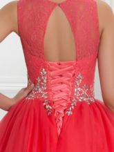 Sheer Neck Lace Ball Gown Quinceanera Dress