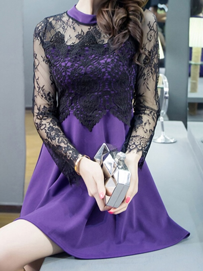 Long Sleeve A-Line Single Lace See-Through Women's Day Dress