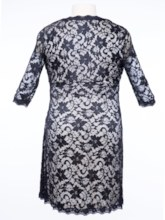 Plus Size V-Neck Half Sleeve Women's Lace Dress