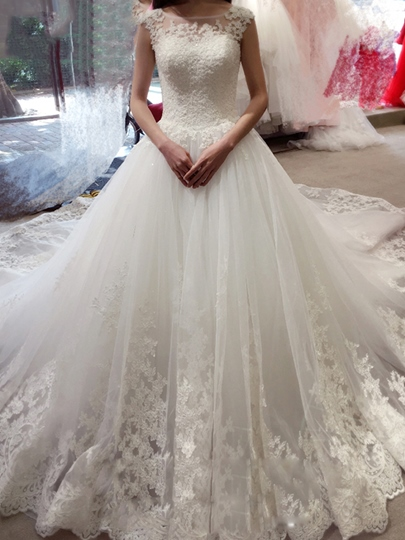 Illusion Neckline Appliques Ball Gown Backless Wedding Dress