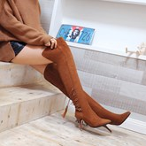 Pointed Toe Side Zipper Over-the-Knee Short Floss Women's Boots
