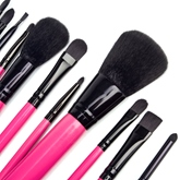 12 Pcs Makeup Brushes for Eye & Lip & Face