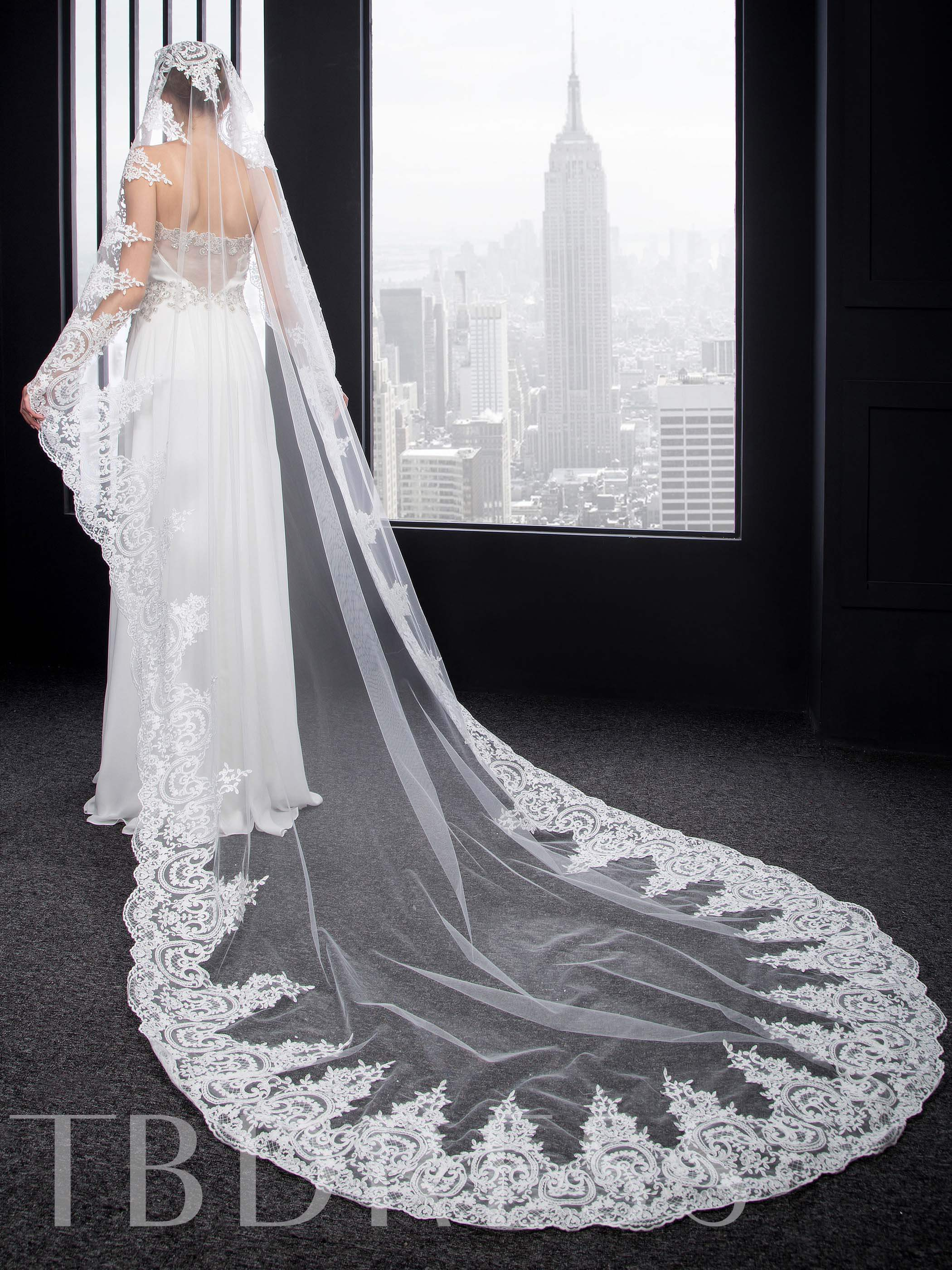 Cathedral Appliques Charming Wedding Veil