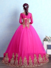 Jewel Neck Ball Gown Long Sleeves Appliques Quinceanera Dress