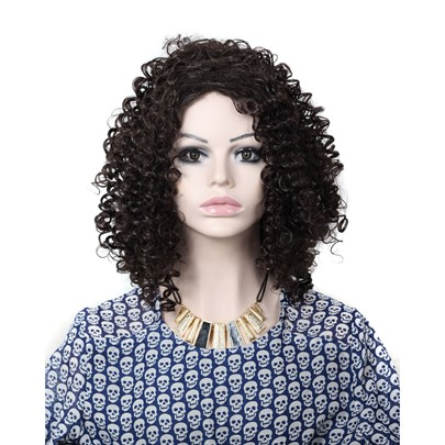 Kinky Curly Wig For Black Women Cheap Synthetic Hair Capless 24 Inches