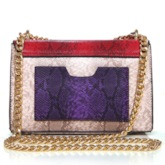 Mini Cross Section Snake Grain Chain Cross Body Bag