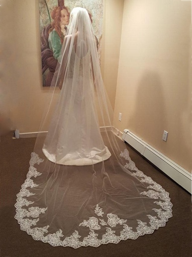 1T Lace Edge Wedding Bridal Veil