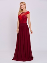 Scoop Neck Zipper-Up Appliques A Line Evening Dress