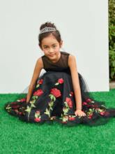 Illusion Neck Floral Embroidery Girls Party Dress