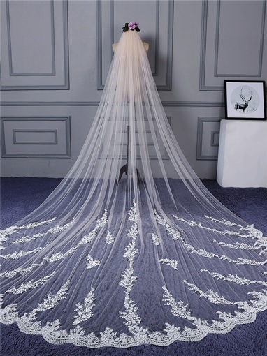 One Layer Appliques Cathedral Bridal Veil