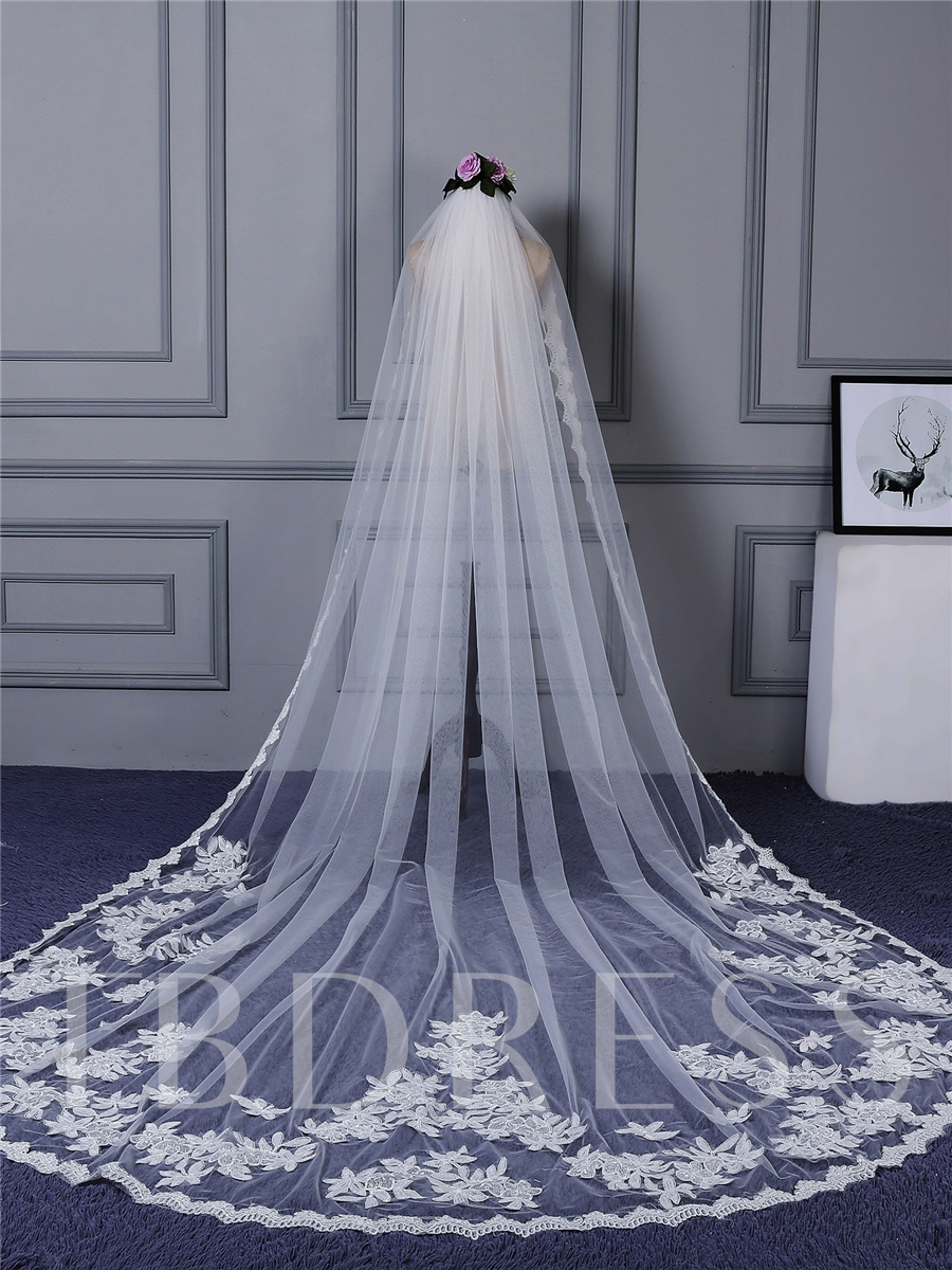 Appliques Lace Edge Wedding Veil