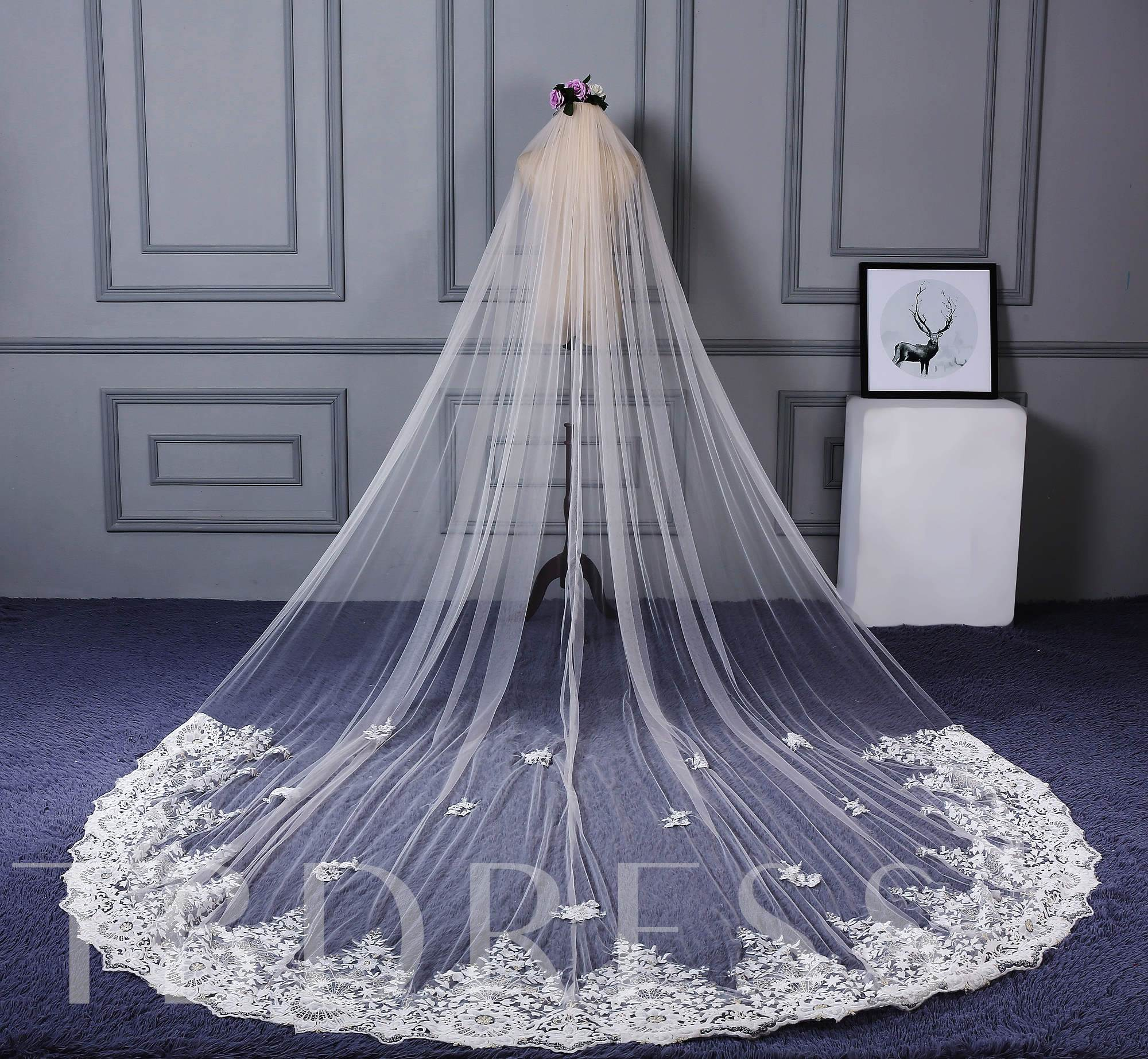 Appliques Cathedral Train Wedding Veil