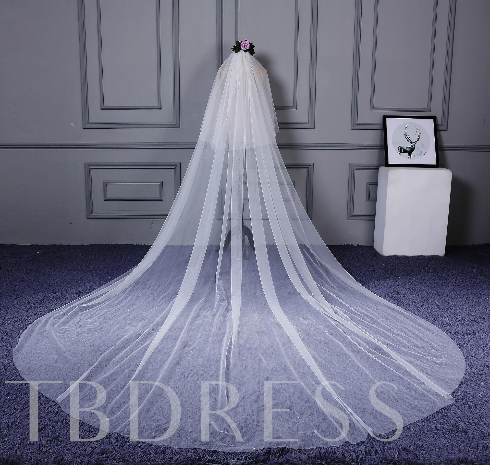 Simple Cathedral Bridal Veil