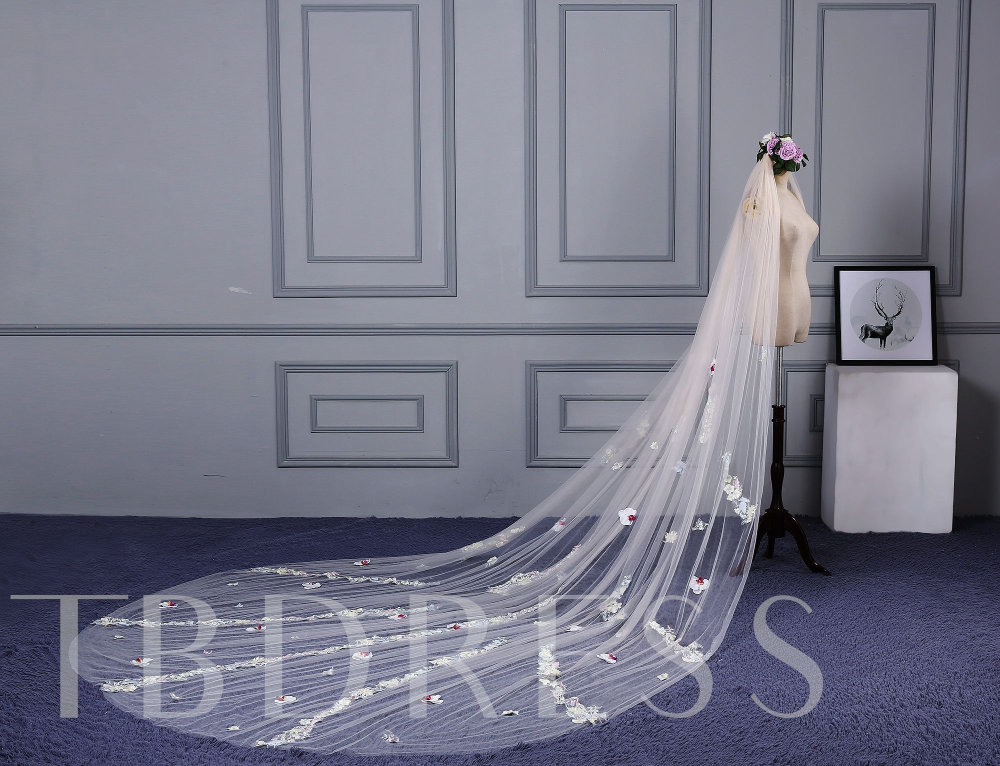 Appliques Wedding Veil with Cathedral Train