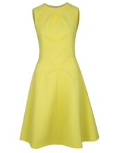 Yellow Invisible Zipper Women's Skater Dress