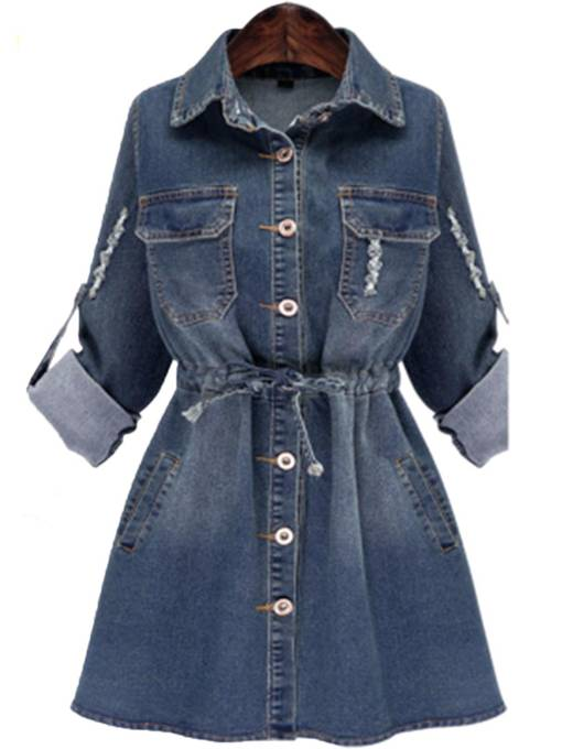 Plus Size Denim Women's Day Dress