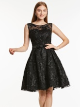 Scoop Neck Sleeveless Lace A Line Homecoming Dress