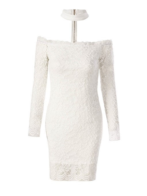Zippered Lace Women's Party Dress